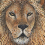 Load image into Gallery viewer, Lion Wall Decal (30 in. x 47 in.)