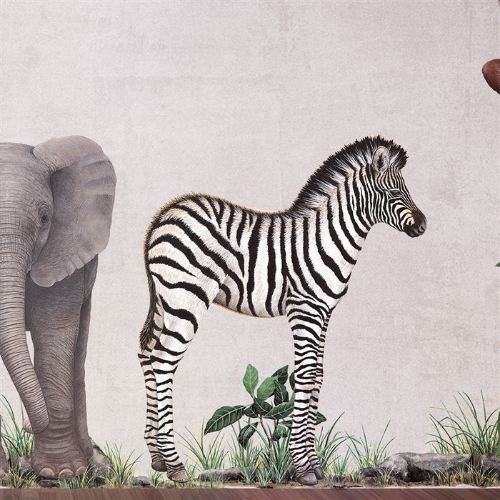 Baby Zebra Wall Decal (32 in. x 40 in.)