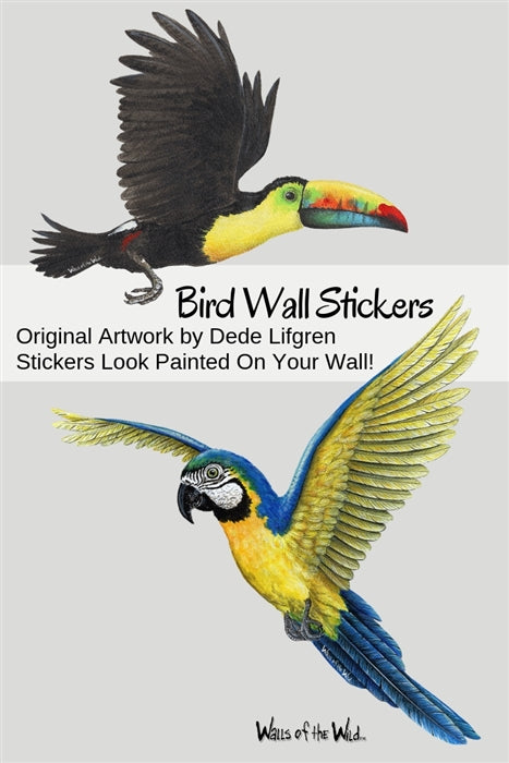 Tropical Birds Wall Decals Collection