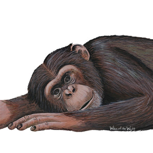 Chimpanzee Wall Decal (28 in. x 10 in.)