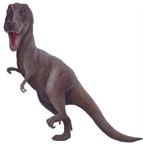 Tyrannosaurus Rex Dinosaur Wall Decal (Two Sizes)