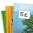 Multi-purpose Labels 25 x 40mm Green (3695)