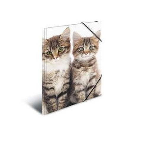 A4 Elasticated Folder Cats