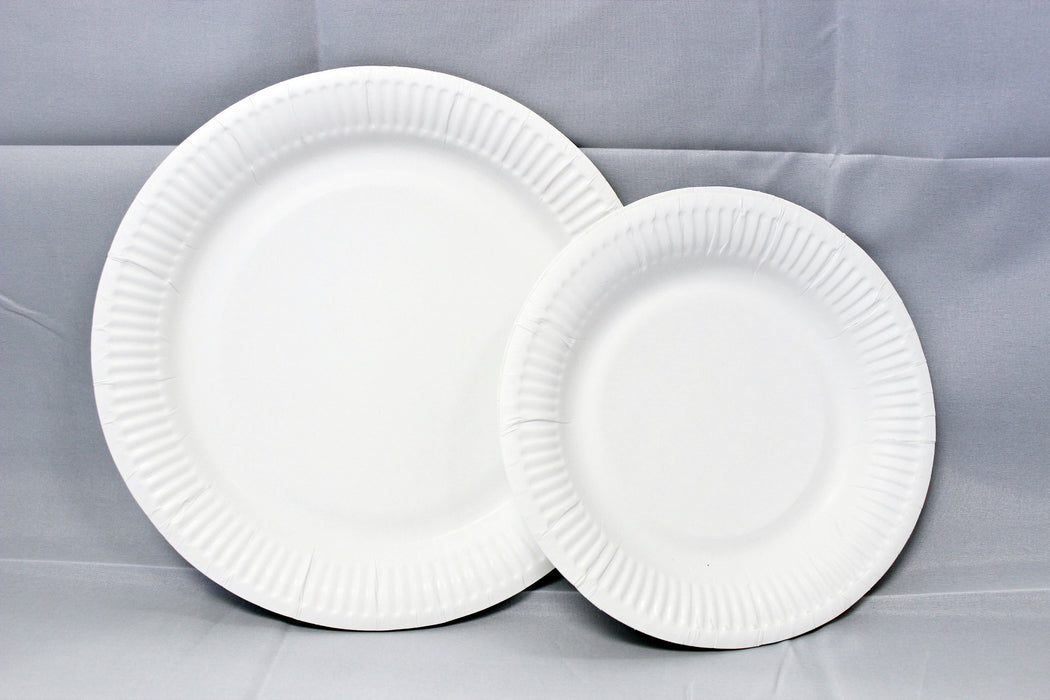 "6"" White Paper Plate Carton (2, 500 pieces)"
