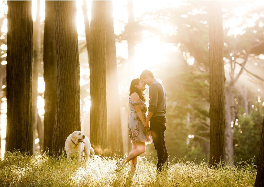 A couple leaning their foreheads towards each other while holding hands with a white dog in the background
