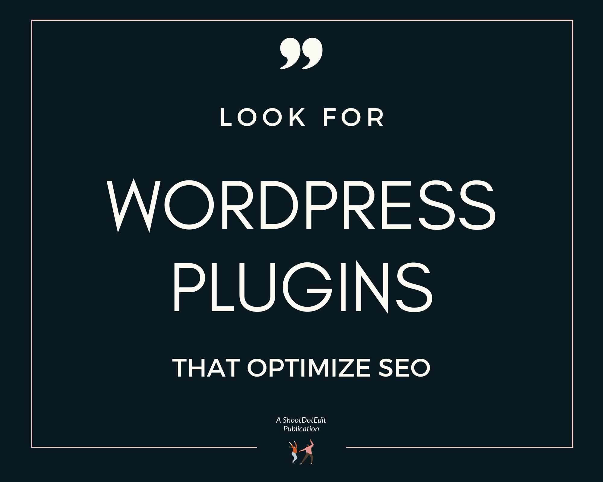 Infographic stating look for WordPress plugins that optimize SEO