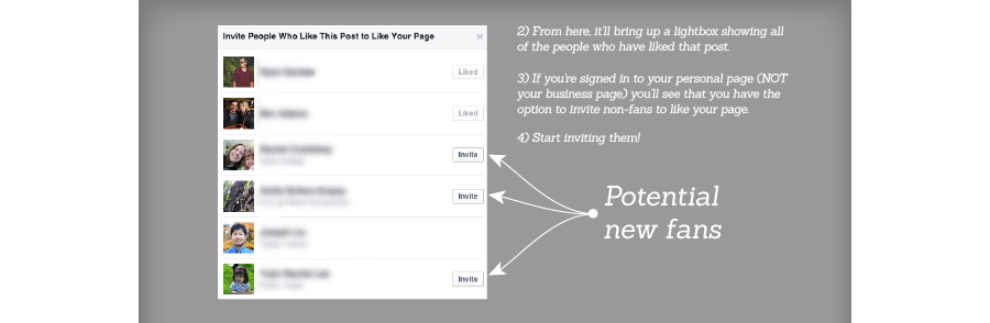 facebook business page fans
