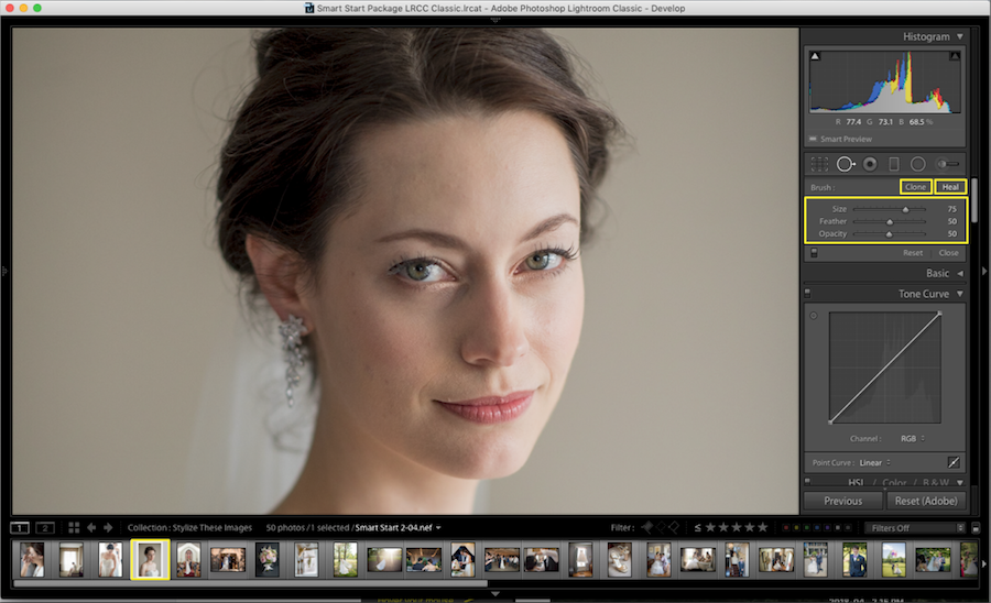 using clone and heal tools lightroom