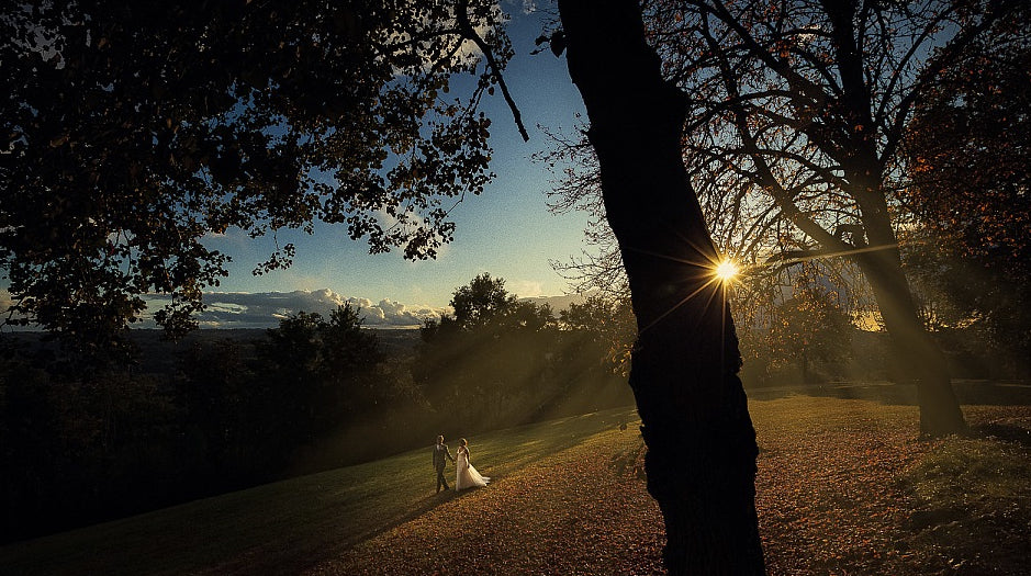 Wide angle shot of a bride and groom walking as a lens flare peaks from the side of a tree branch