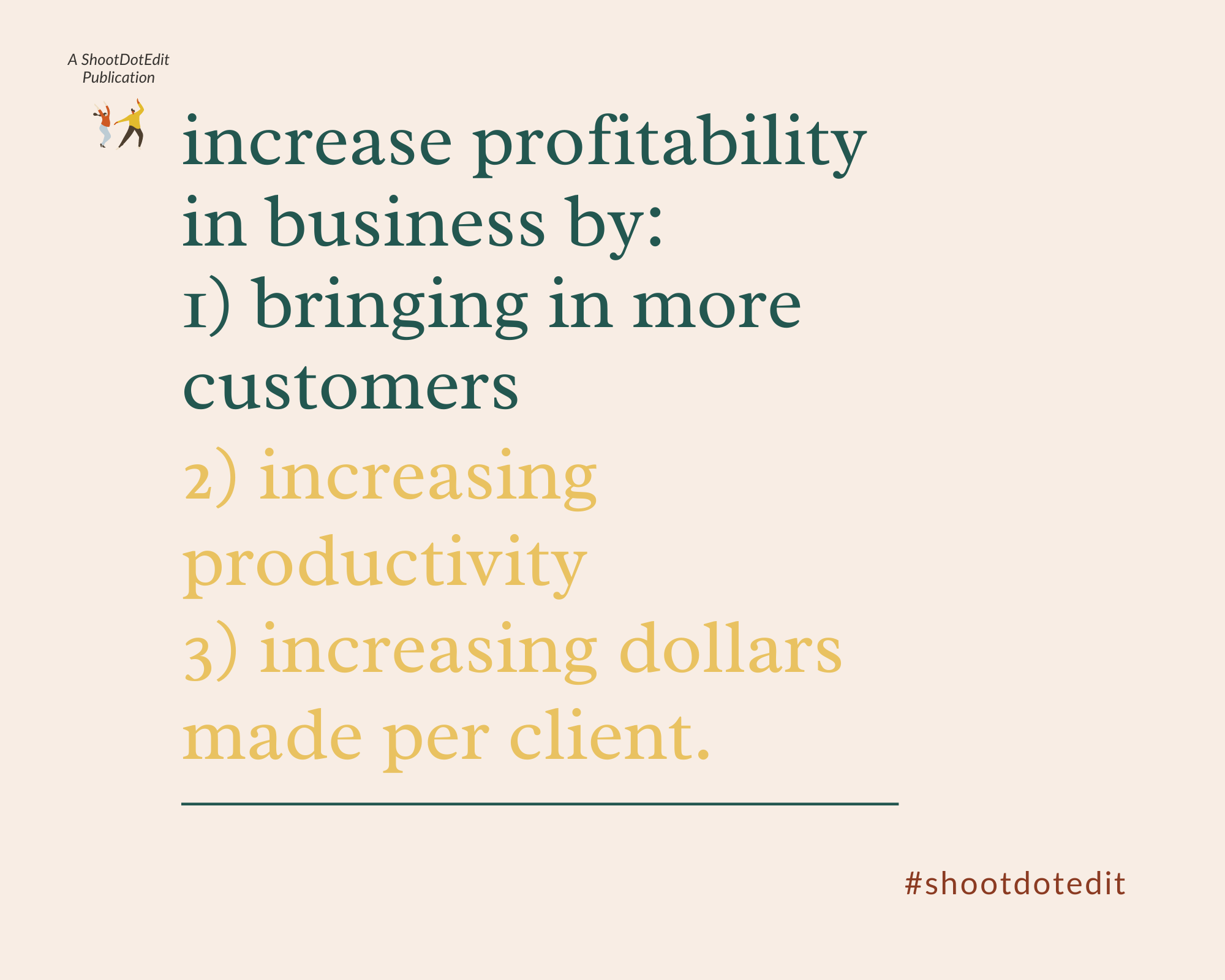 Infographic stating increase profitability in business by bringing in more customers, increasing productivity, and increasing dollars made per client