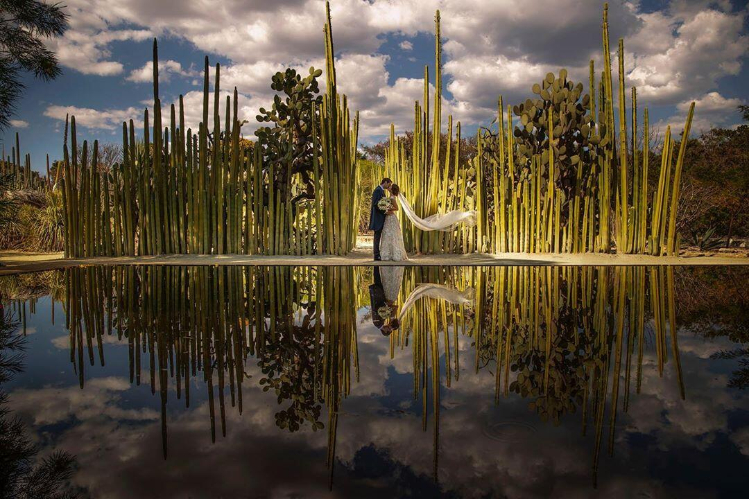 A wedding photo by cacti shot by Jorge Santiago Photography and photo editing by ShootDotEdit