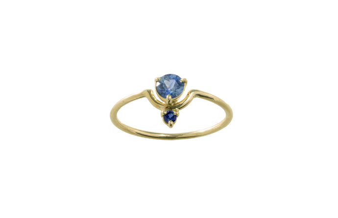 One of a Kind Small Nestled Light and Dark Blue Sapphire Ring