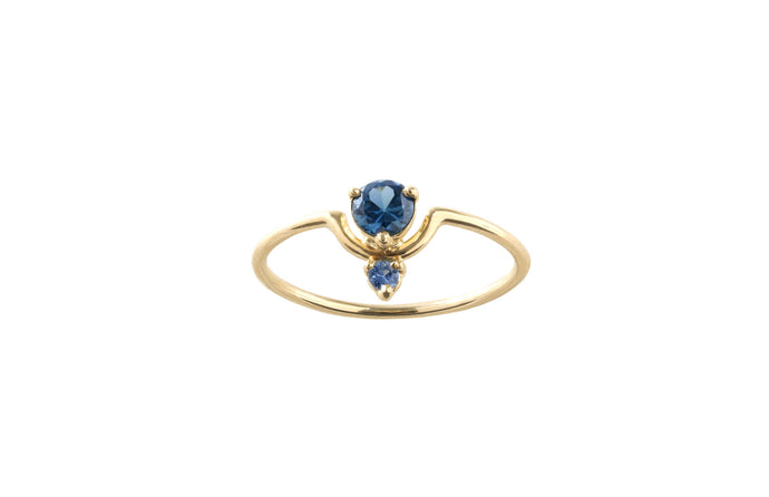 One of a Kind Small Nestled Dark and Light Blue Sapphire Ring - Available at Tomfoolery