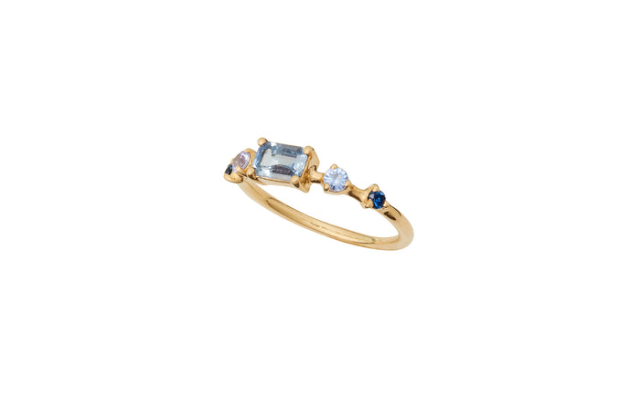 Limited Edition Medium Vista Sapphire and Tanzanite Ring