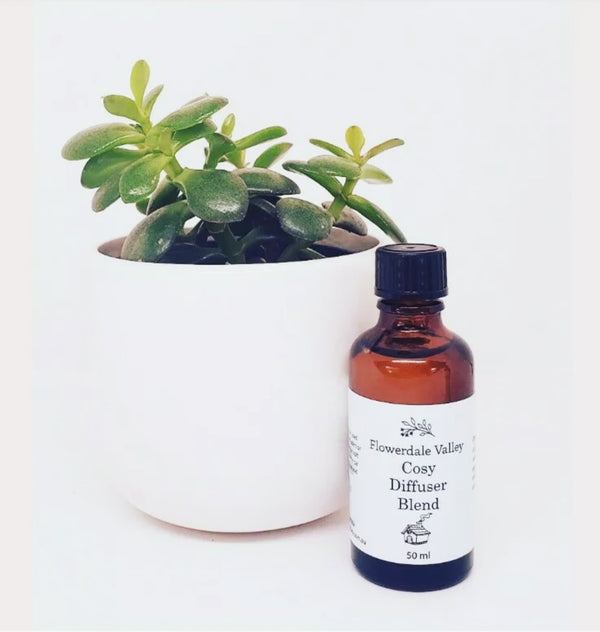 Cosy Blend Essential oil 50ml