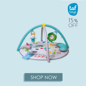 Taf Toys at Little Baby