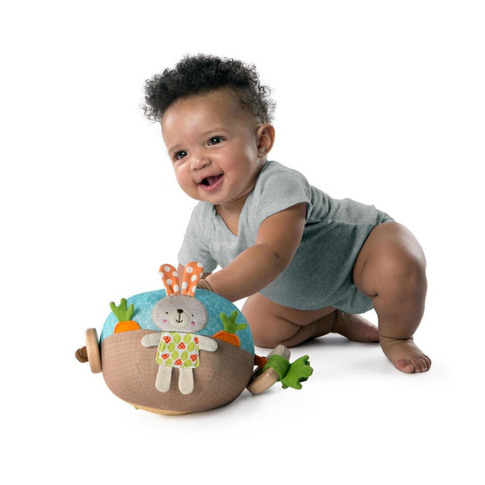 Bright Starts Giggle Garden Ball BS11071