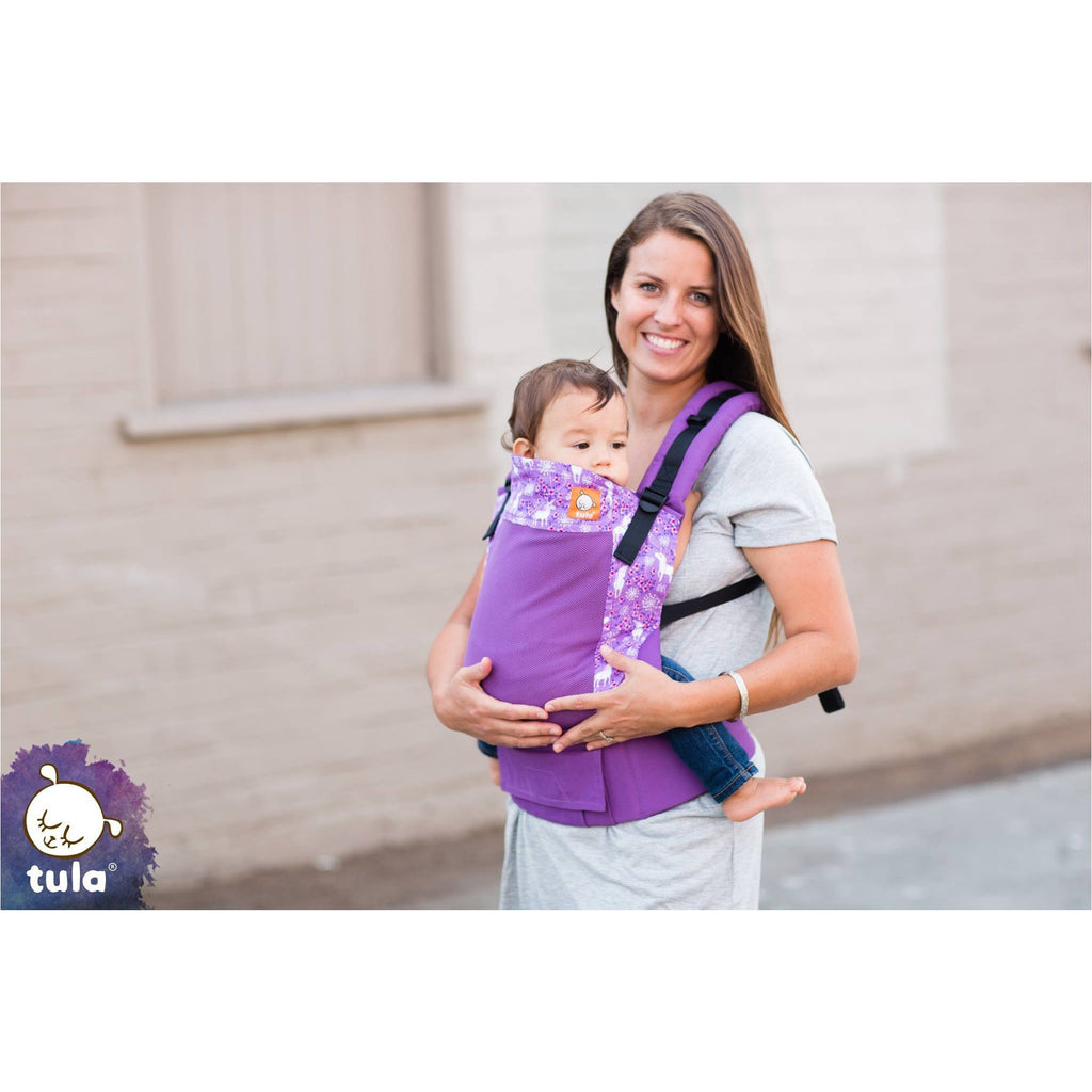 Tula Coast Prance Baby Carrier - Standard - Little Baby