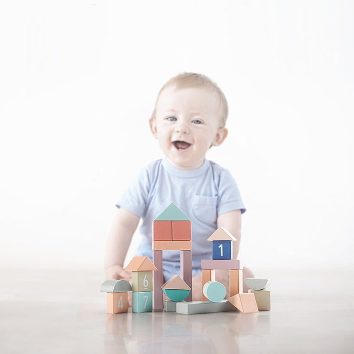 Bc Babycare Building Blocks (81pcs)