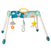 Taf Toys  Mini Moon Take To Play Baby Gym