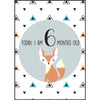 The Paper Elf - Animal Baby Milestone Cards