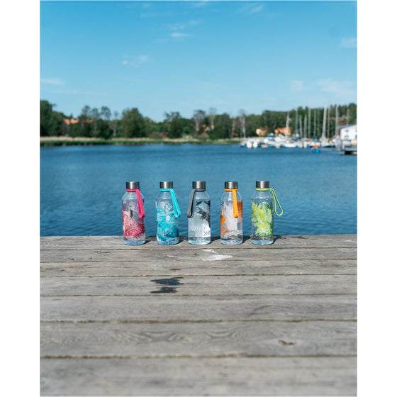 Carl Oscar WisdomFlask 0.65 L - 5 colors to choose