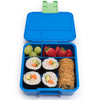 Little Lunch Box - Bento Three – Dinosaur