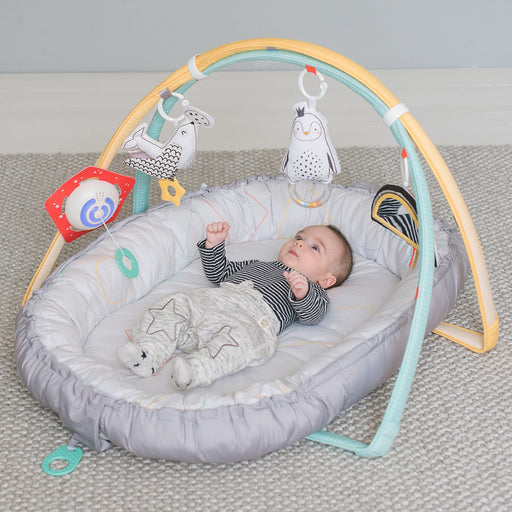 Easier Development - Taf Toys Musical Newborn Nest & Gym