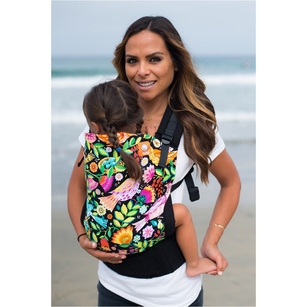 Aviary - Tula Baby Carrier (Standard) - Little Baby
