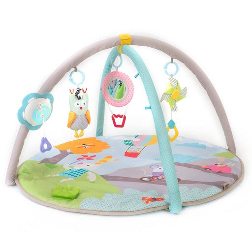 Play Gyms - Taf Toys Musical Nature Baby Gym