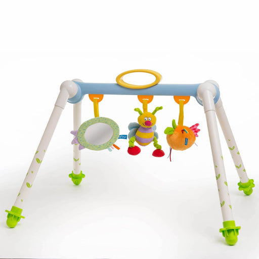 Play Gyms - Taf Toys Take To Play Baby Gym