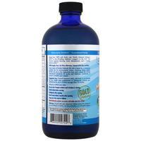 Supplements - Nordic Naturals Children's DHA Arctic Cod Liver Oil - Strawberry, 473 Ml.
