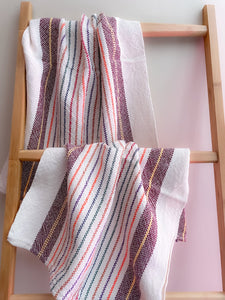 Rigid Heddle Cornucopia of Color Towels Pattern