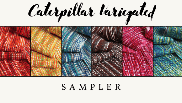 Caterpillar Variegated Sampler