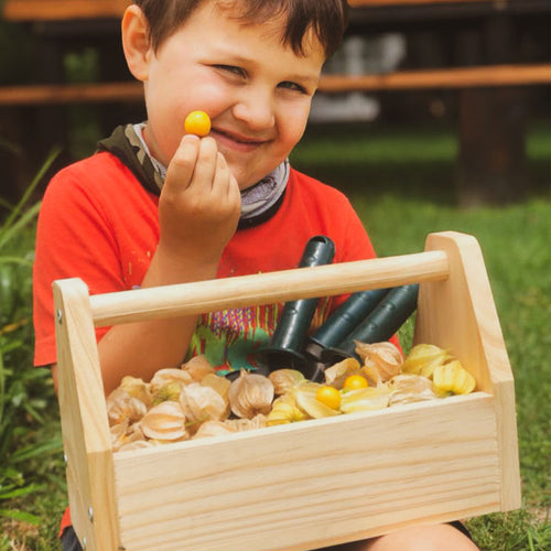 kids wooden tool box kit
