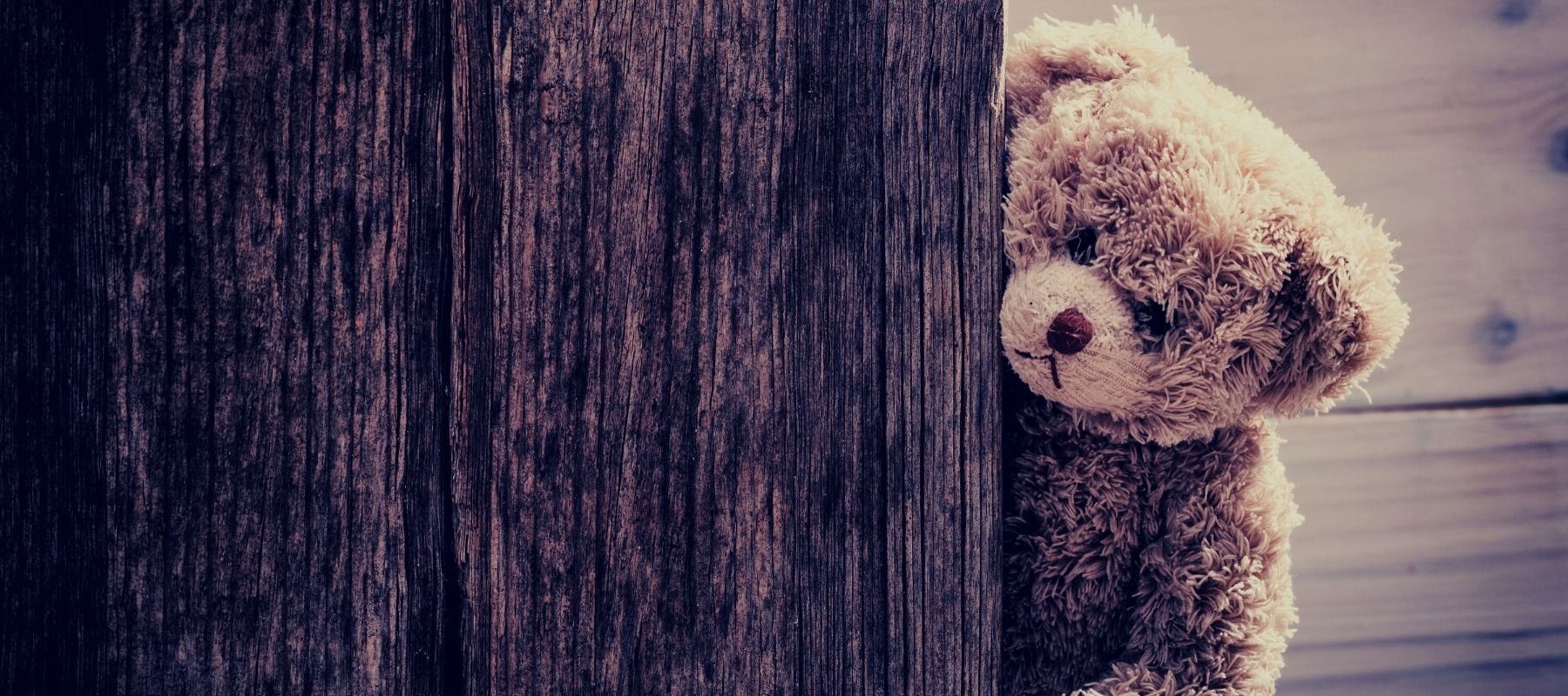 Teddy Bear Standing Behind a Wooden Fence