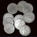 1882 Morgan Dollar shell and coin set (Coins Thru Table)