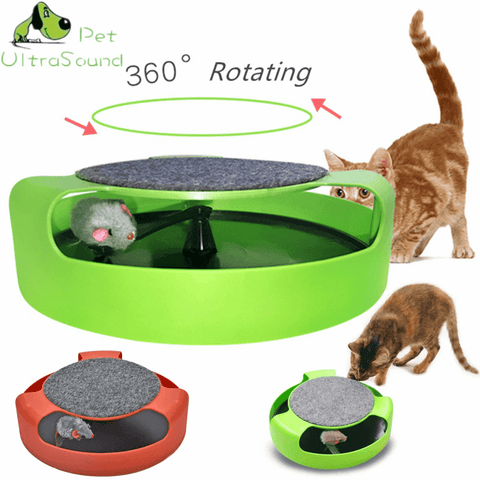 Cat Interactive Toys