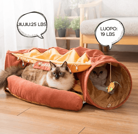 Cat Tunnel Bed