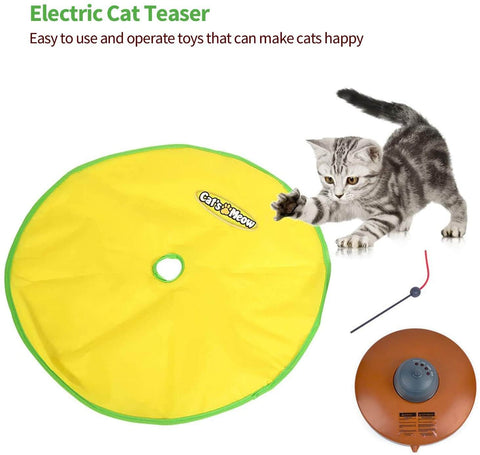 Cat Undercover Mouse Toy