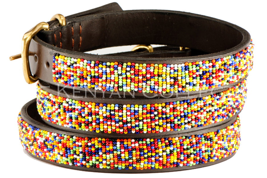 Confetti Dog Collar by TKC