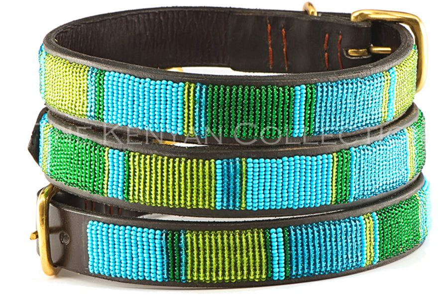 Lagoon Dog Collar by TKC