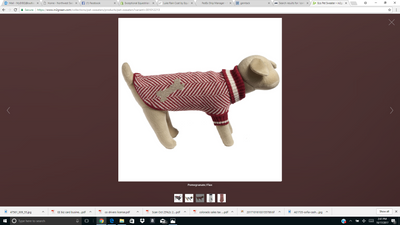 In2Green Dog Sweaters - Exceptional Equestrian