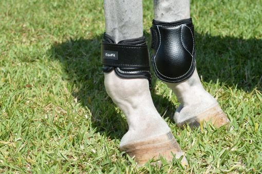 Young Horse Hind Boot by Equifit