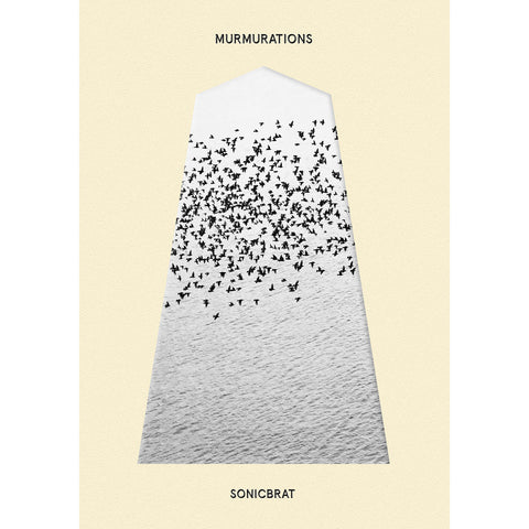 Sonicbrat - Murmurations - Hot Salvation