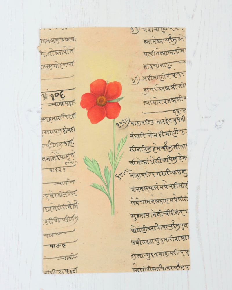 Indian Flower Painting 3