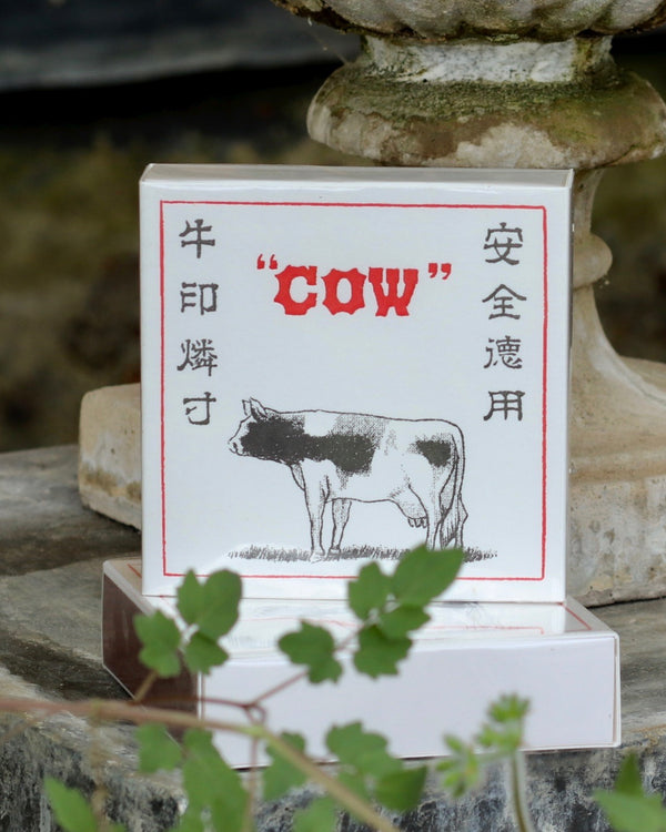 Square Matchbox -  Cow