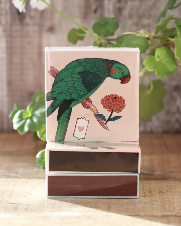 Square Matchbox -  Green Parrot