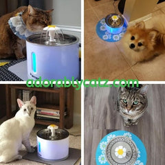 adorablycatz-USB Cat Water Fountain-four cats