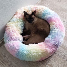 Load image into Gallery viewer, adorablycatz-calming cat bed-rainbow-1